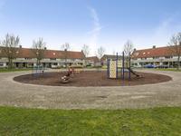 Kokmeeuw 8 in Bergen Op Zoom 4617 KH