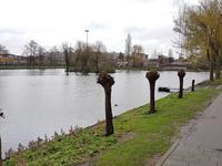 Rameaustraat 9 in Capelle Aan Den IJssel 2901 RH