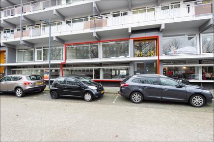 Schelluinsevliet 13 in Gorinchem 4203 NB