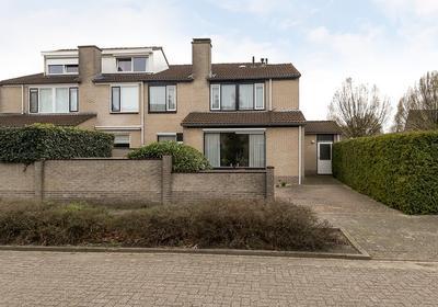 Ganzebloem 89 in Kampen 8265 MB