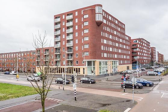 Pablo Picassostraat 223 in Utrecht 3544 NX