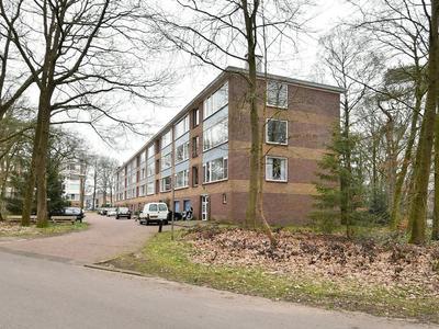 Antonie Van Leeuwenhoeklaan 245 in Soesterberg 3769 XH