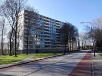 Buizerd 14 in Heerenveen 8446 KK