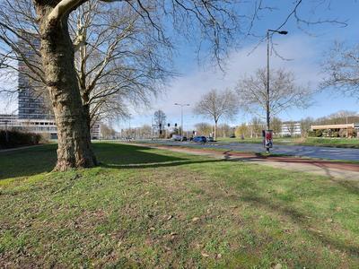 Boksbergenstraat 1 3 in Arnhem 6825 BB