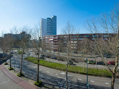 Avenue Ceramique 13 E in Maastricht 6221 KV