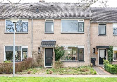 Westhove 22 in Roden 9301 TG