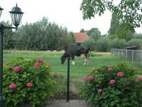 Koningin Wilhelminalaan 119 in Hardinxveld-Giessendam 3372 AC