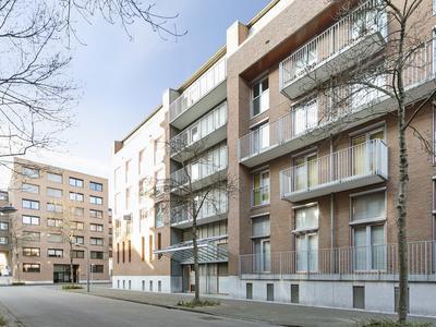 Zeguerslunet 12 B in Maastricht 6221 KR