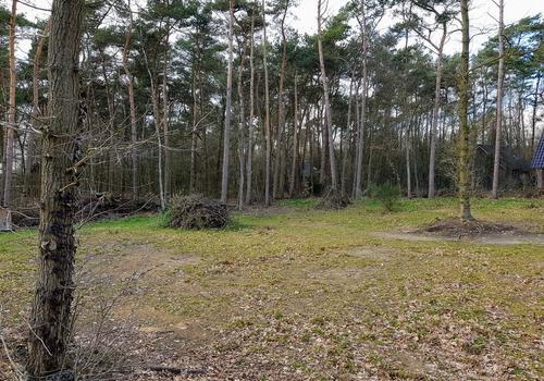Kattenbergweg 1 28 in Winterswijk 7101 BM