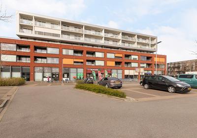 Westerscheldeplein 120 in Middelburg 4335 NL