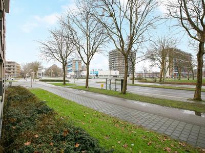 Aquamarijn 141 in Alphen Aan Den Rijn 2403 DT