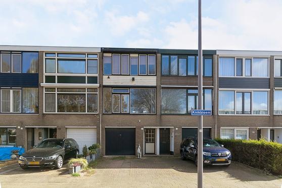 Knikbloem 14 in Rotterdam 3068 AD