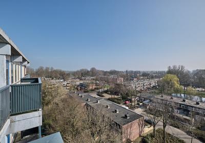 Meerpaal 44 in Groningen 9732 AC