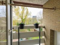 Akkerhoornbloem 12 in Leiden 2317 KP