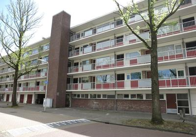 Franciscus Van Assisielaan 109 in Amstelveen 1185 CH