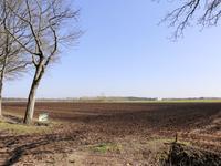 Peelweg in Ysselsteyn 5813 AD