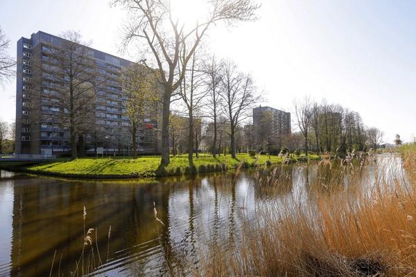 Griegplein 147 in Schiedam 3122 VN