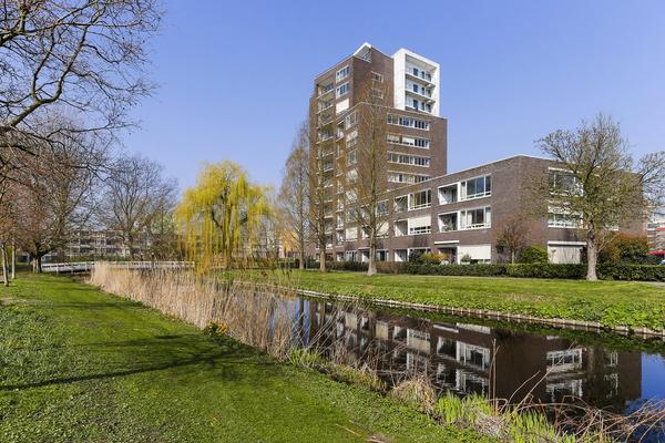 Hargplein 132 in Schiedam 3121 VG