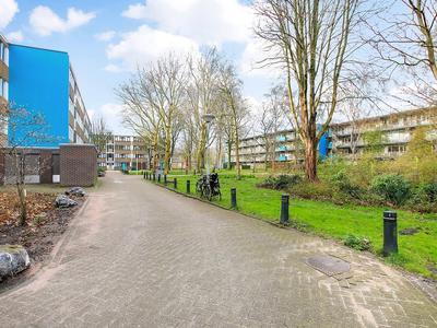 Bramzeilhof 108 in Amsterdam 1034 LK