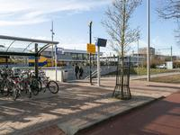 Parallelweg 47 in Bergen Op Zoom 4621 JR