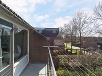 Zwenkgras 8 in Leeuwarden 8935 HC