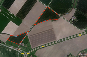 Mosterdweg in Oostburg 4501