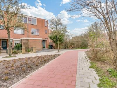 Leidekkerstraat 43 in Alkmaar 1825 BL