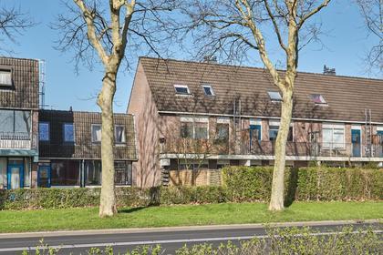 Mudaheerd 42 in Groningen 9737 XA