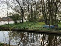 Vriezekoop 11 C in Leimuiden 2451 CP