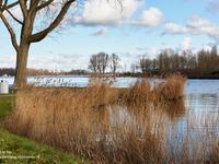 Schoenerkade 1 in Zoetermeer 2725 EV
