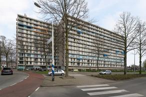 Sint Annadal 19 N in Maastricht 6214 PB