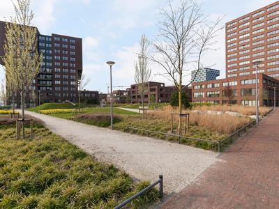 Mullerkade 203 in Rotterdam 3024 EP