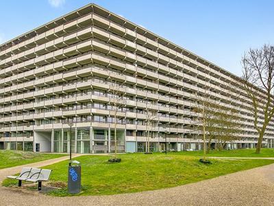 Kleiburg 12 A in Amsterdam 1104 EA
