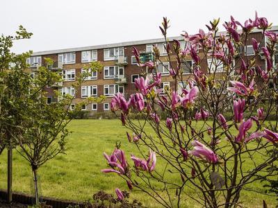 Briljantlaan 66 in Utrecht 3523 CG
