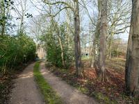 Domburgseweg 13 A. in Domburg 4357 BA