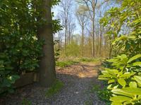 Bergweg 18 A in Overberg 3959 AB