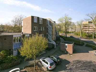 De Burcht 42 in Arnhem 6843 JH