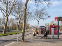 Oost-Dorsch 65 in Zaandam 1504 BK