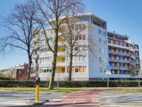 Zuiderzeepark 44 in Amsterdam 1024 MG