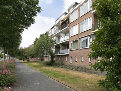 Sijlhoff 36 in Amsterdam 1082 EP