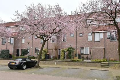 Graaf Floris 11 in Huizen 1276 XA
