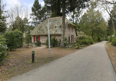 Buinerweg 8 272 in Ees 9536 PG