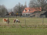 Maneschijn in Oost West En Middelbeers 5091 JW
