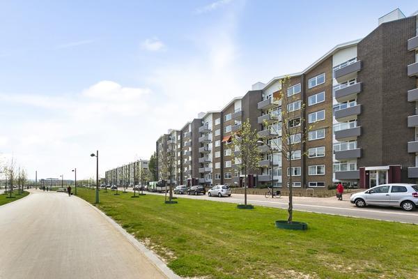 Oranjeplein 46 F in Maastricht 6224 KL
