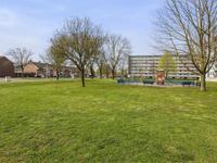 Apollovlinderlaan 35 in Eindhoven 5641 BJ