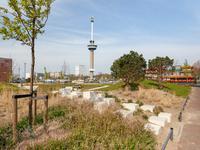 Mullerkade 609 in Rotterdam 3024 EP