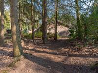 Bosweg 8 in Wapenveld 8191 JM