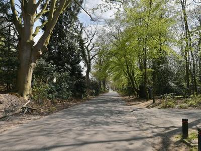 Kolonieweg 7 in Soest 3768 EW