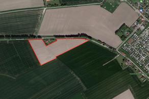 Mettenijedijk in Nieuwvliet 4504