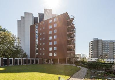 Specerijenhof 11 in Rotterdam 3063 BX